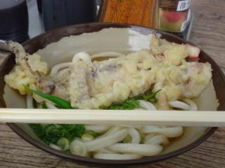 うどん巡礼2009
